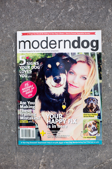 Cover of Modern Dog magazine featuring Happy Tails Pet Photography