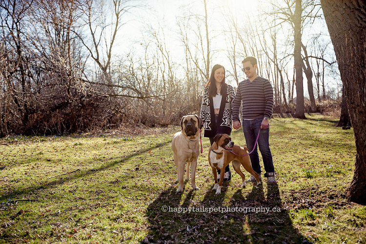 Oakville pet and family photographer.