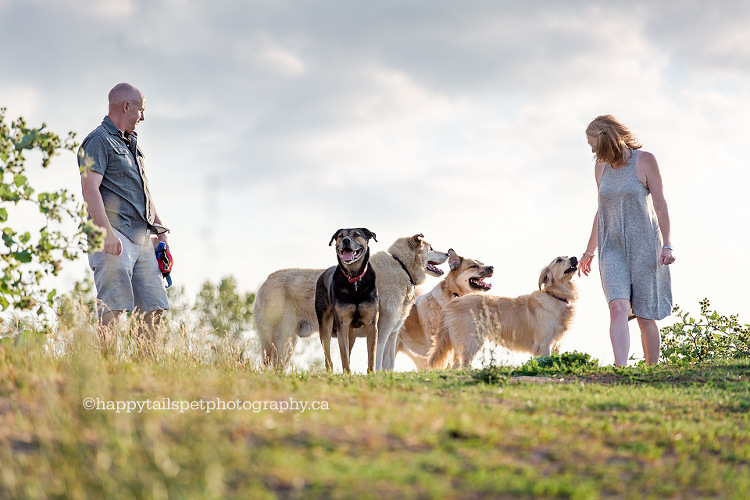 Natural, expressive people and pet photography in Toronto, Ontario and beyond.
